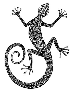 Vector hand drawn lizard or salamander with ethnic tribal patter