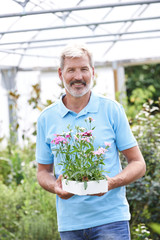 Portrait Of Male Sales Assistant At Garden Center Holding Plants