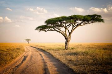 Poster de jardin Afrique African Landscape - Tanzania