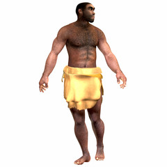 Homo Erectus Male - Homo Erectus is an extinct species of human that lived during the Pleistocene Period in Eurasia and Africa.