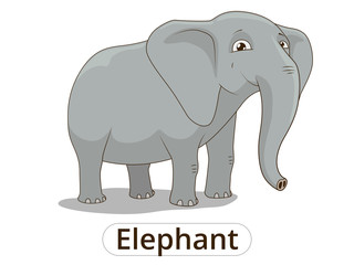 Elephant african savannah cartoon illustration