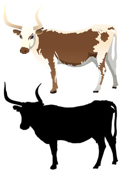 Cow with Silhouette