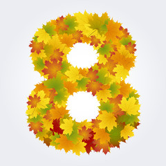 Wall Mural - number 8 of the autumn leaves