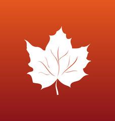 Maple Leaf on Orange Background