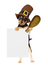 Wall Mural - Thanksgiving Dog With Turkey Leg and Sign