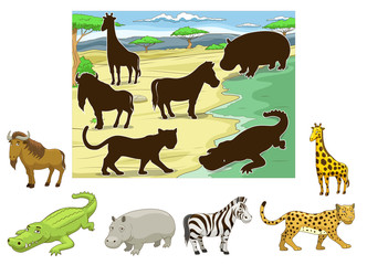 Match animals to their shadows educational game