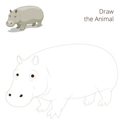 Draw the animal educational game for hippopotamus