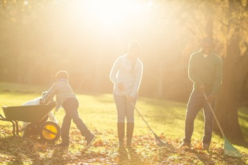 Young family picking up leaves