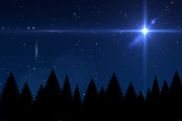 Bright star in night sky