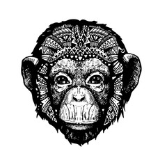Monkey Head doodle style
