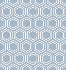 Blue and White Hexagon Tile Pattern Repeat Background
