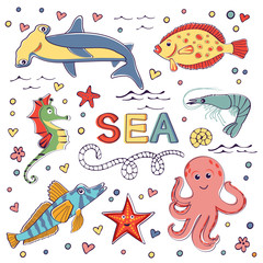 Colorful marine hand drawn clipart