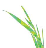 blade of grass vector - photo #49