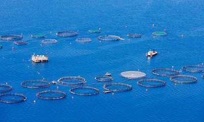 Fish farm in the Mediterranean sea in Kefalonia next to Agrostoli, the type that is used to reuse exhausted oil rigs.