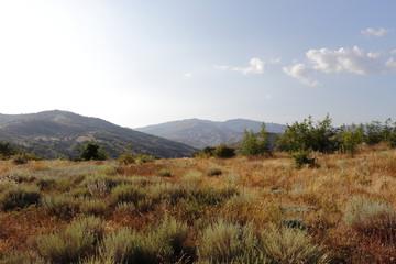 Вид с небольшого плато на гору Даэ-Тепе в окрестностях посёлка Морское, Крым.