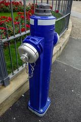 Blauer Hydrant