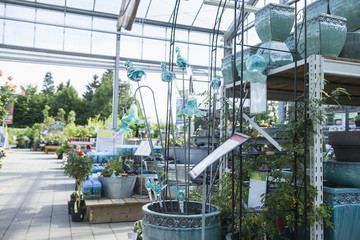 Potted plants for sale in garden centre, Augsburg, Bavaria, Germany