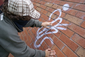 street crime, urban vandalism