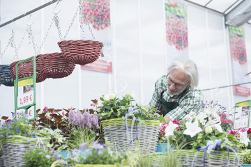 Shop assistant selling potted plant in greenhouse, Augsburg, Bavaria, Germany