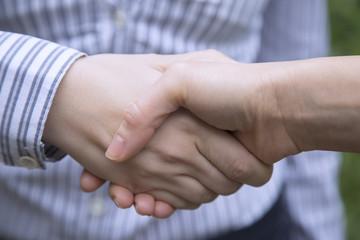 Businesswomen shaking hands.