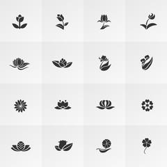 Silhouette fantasy logo flower lotus rose tulip sunflower daisy clover leaf icon set, create by vector