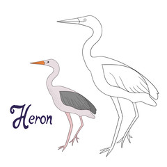 Educational game coloring book heron bird