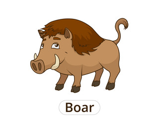 Forest animal boar cartoon for children vector