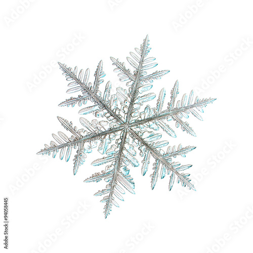 Real Snowflakes Wallpaper | www.imgkid.com - The Image Kid ...