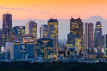 Tokyo Skyline at Twilight