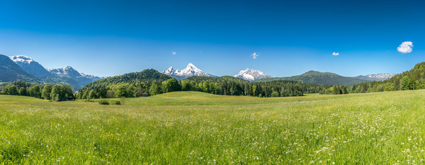 Fototapete - Idyllic landscape in the Alps with green meadows and farmhouse