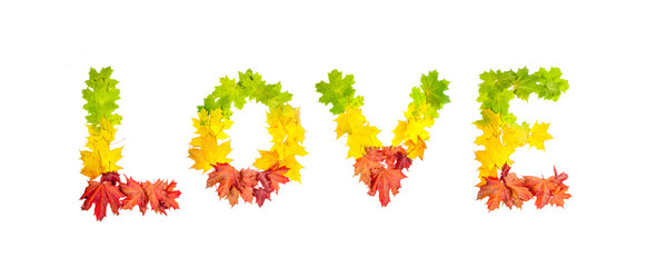 word LOVE made of autumn maple leaves in bright colors