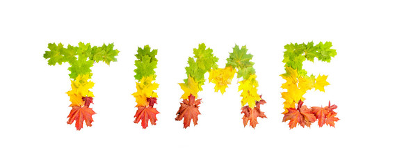 word TIME made of autumn maple leaves in bright colors