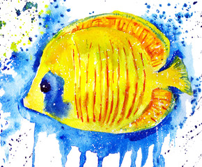 watercolor butterfly fish