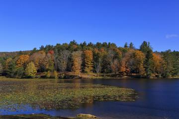 Cone Lake at Moses Cone Memorial Park in the Fall
