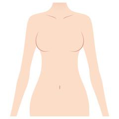 女性の上半身 美容
