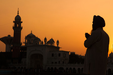 silhouette of pilgrim praying at the holy temple of amritsar, in