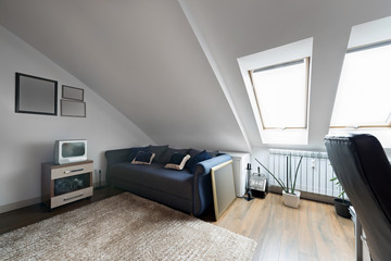 Apartment made in the attic