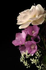 Fotobehang blumenstrauß mit rose