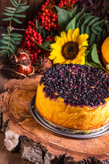 Autumn pumpkin cheesecake with cranberries