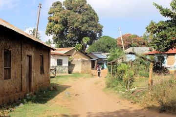 Kenianisches Buschdorf