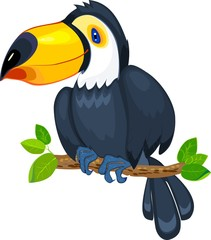 Cute toucan sitting on tree branch