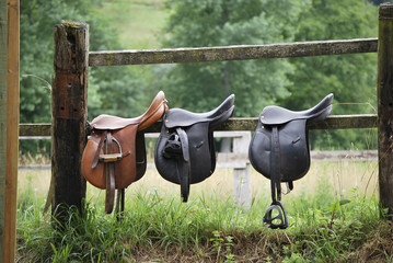 Fotobehang Paardrijden Three saddles