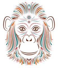 monkey on white background