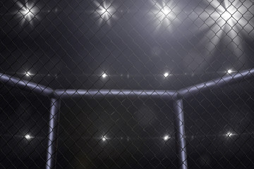 mma fighting stage side view under lights