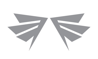Wing vector