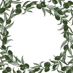 Olive frame vector