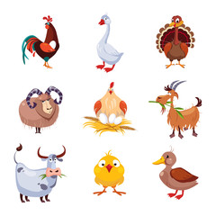 Farm Animal and Birds Vector Illustration Set. Flat Design