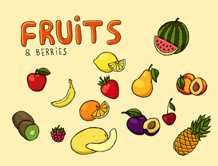 Colorful hand drawn vector fruits and berries illustration