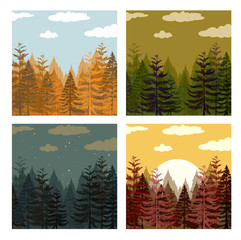 Pine forest in four colors