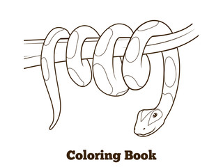 Boa cartoon coloring book vector illustration